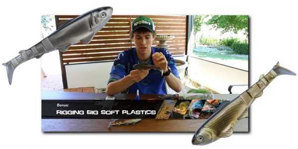 rigging-soft-plastics-murray-cod